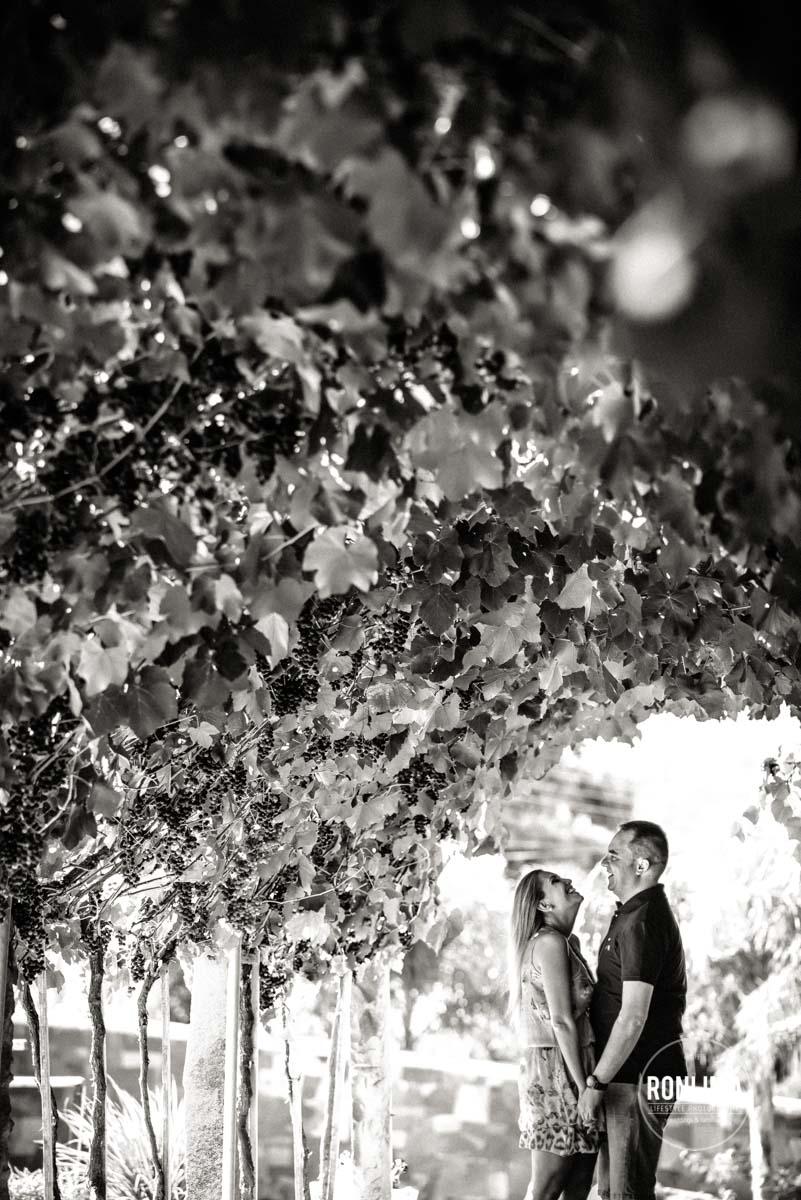 Pre Wedding no Vale dos Vinhedos